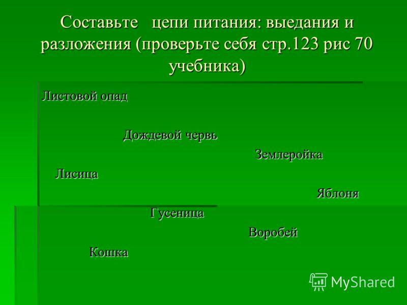 Составьте цепи питания: выедания и разложения (проверьте себя стр.123 рис 70 учебника) Листовой опад Дождевой червь Дождевой червь Землеройка Землеройка Лисица Лисица Яблоня Яблоня Гусеница Гусеница Воробей Воробей Кошка Кошка