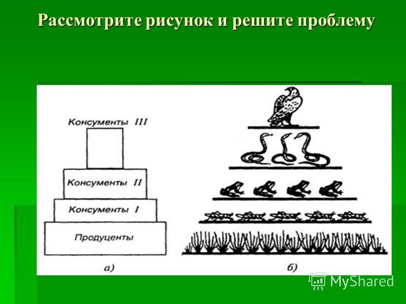 Рассмотрите рисунок и решите проблему