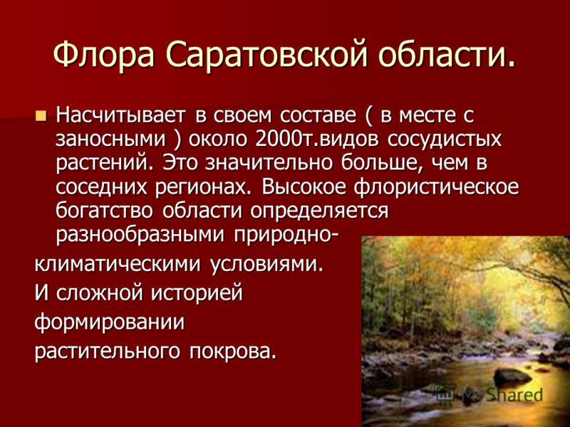 Флора Саратовской области. Насчитывает в своем составе ( в месте с заносными ) около 2000т.видов сосудистых растений. Это значительно больше, чем в соседних регионах. Высокое флористическое богатство области определяется разнообразными природно- Насч