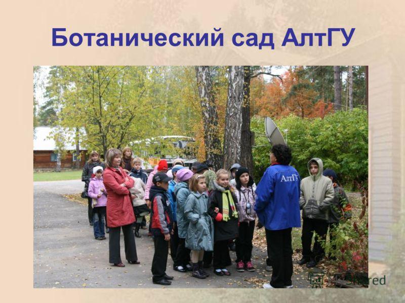 Ботанический сад АлтГУ