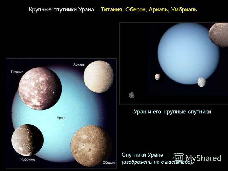 Крупные спутники Урана – Титания, Оберон, Ариэль, Умбриэль Спутники Урана (изображены не в масштабе). Уран и его крупные спутники
