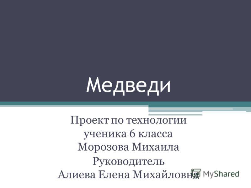 Медведи Проект по технологии ученика 6 класса Морозова Михаила Руководитель Алиева Елена Михайловна