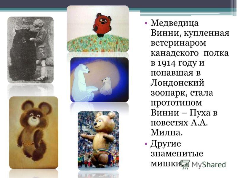 Медведица Винни, купленная ветеринаром канадского полка в 1914 году и попавшая в Лондонский зоопарк, стала прототипом Винни – Пуха в повестях А.А. Мил