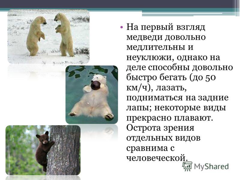 На первый взгляд медведи довольно медлительны и неуклюжи, однако на деле способны довольно быстро бегать (до 50 км/ч), лазать, подниматься на задние лапы; некоторые виды прекрасно плавают. Острота зрения отдельных видов сравнима с человеческой.