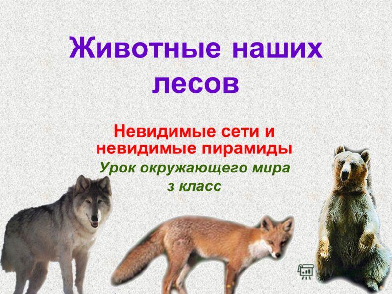 Животные наших лесов Невидимые сети и невидимые пирамиды Урок окружающего мира з класс