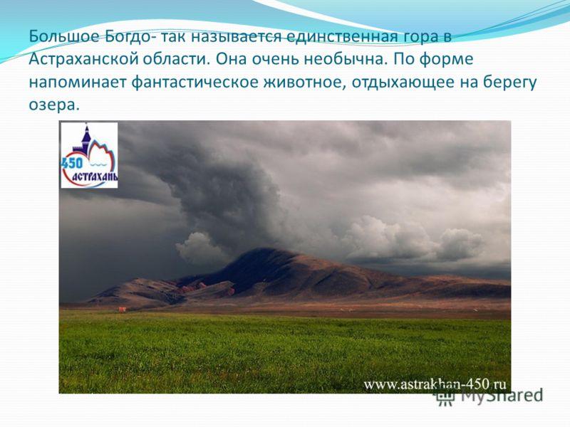 Большое Богдо- так называется единственная гора в Астраханской области. Она очень необычна. По форме напоминает фантастическое животное, отдыхающее на берегу озера.