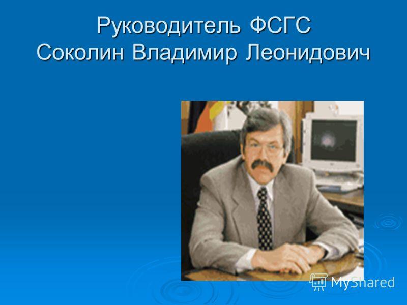 Руководитель ФСГС Соколин Владимир Леонидович