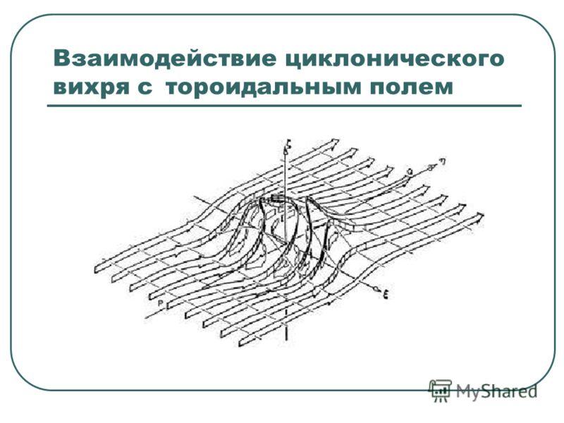 Взаимодействие циклонического вихря с тороидальным полем