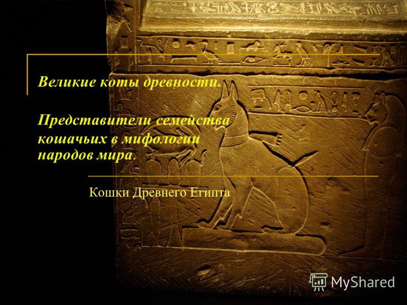 Великие коты древности. Представители семейства кошачьих в мифологии народов мира. Кошки Древнего Египта