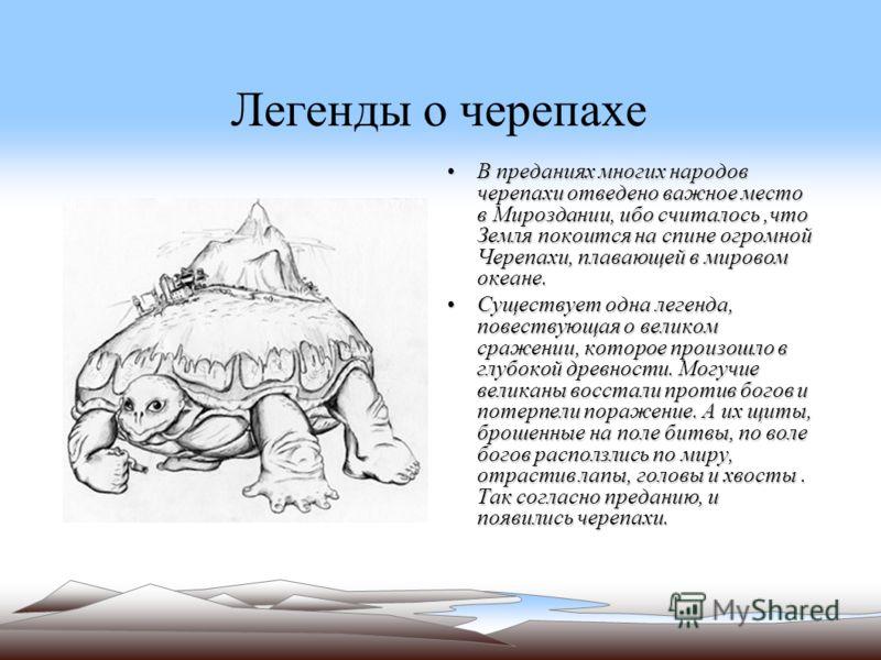 Легенды о черепахе В преданиях многих народов черепахи отведено важное место в Мироздании, ибо считалось,что Земля покоится на спине огромной Черепахи, плавающей в мировом океане.В преданиях многих народов черепахи отведено важное место в Мироздании,