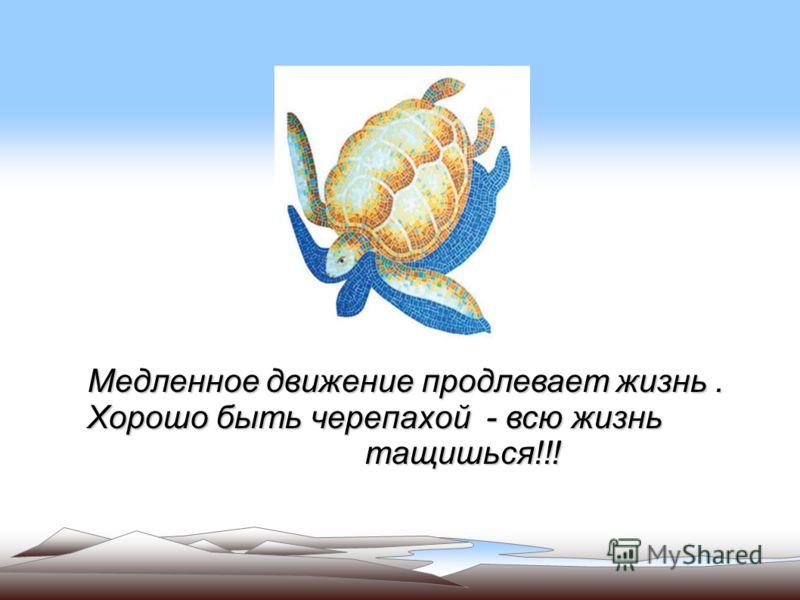Медленное движение продлевает жизнь. Хорошо быть черепахой - всю жизнь тащишься!!! тащишься!!!