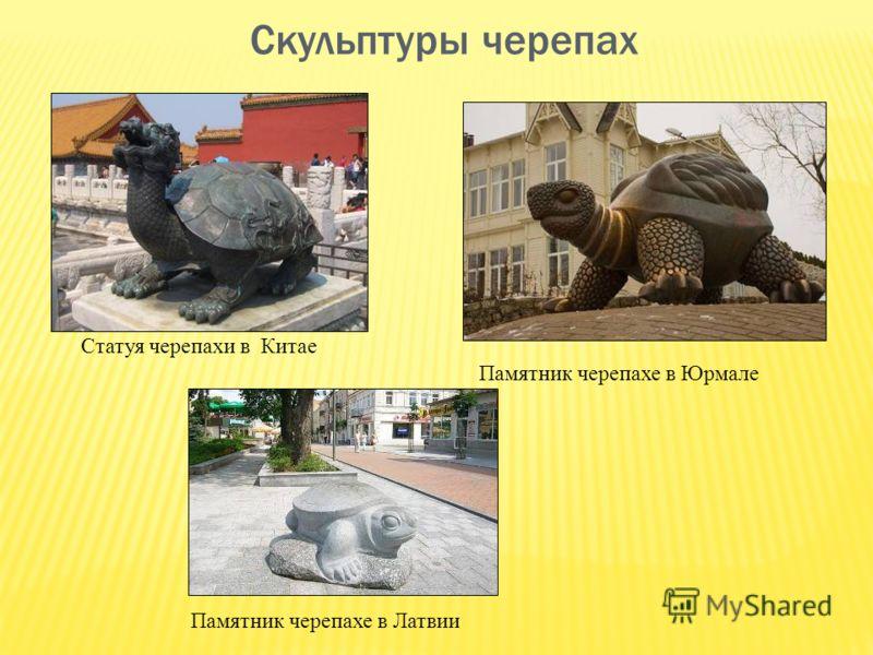 Скульптуры черепах Статуя черепахи в Китае Памятник черепахе в Юрмале Памятник черепахе в Латвии