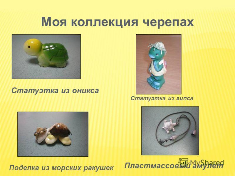 Моя коллекция черепах Статуэтка из оникса Пластмассовый амулет Поделка из морских ракушек Статуэтка из гипса
