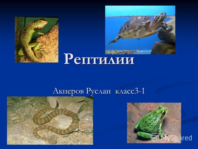 Рептилии Акперов Руслан класс3-1
