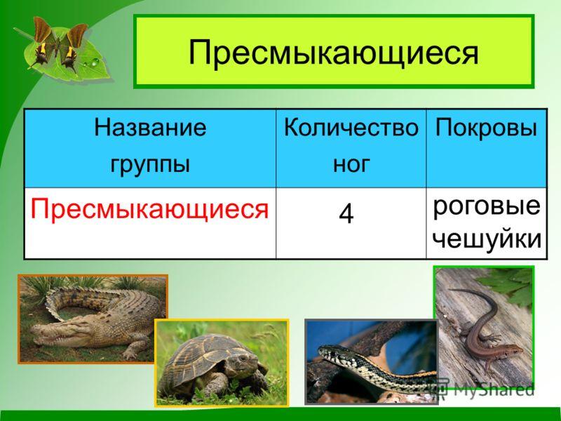 Чем пресмыкающиеся отличаются от других животных?