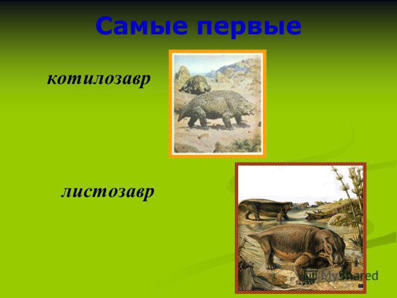 Самые первые котилозавр листозавр