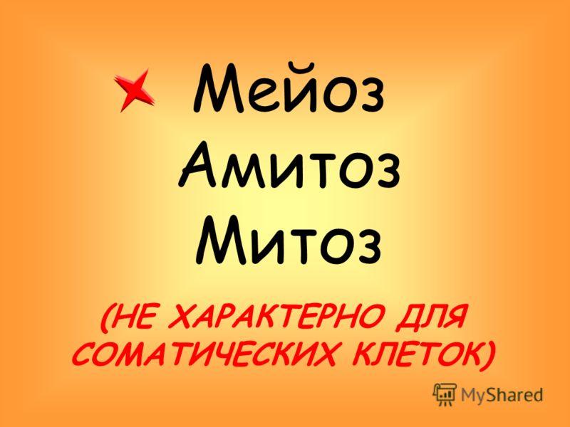 Мейоз Амитоз Митоз (НЕ ХАРАКТЕРНО ДЛЯ СОМАТИЧЕСКИХ КЛЕТОК)