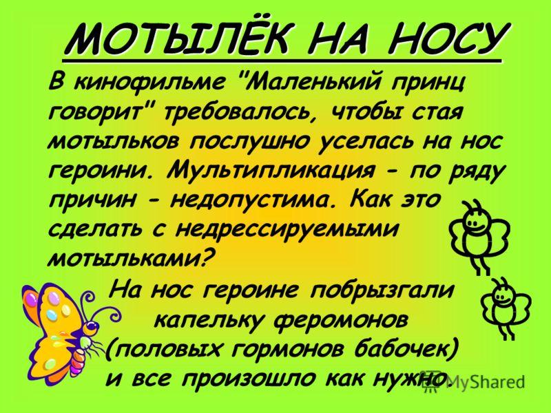 МОТЫЛЁК НА НОСУ В кинофильме