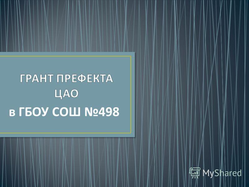 в ГБОУ СОШ 498