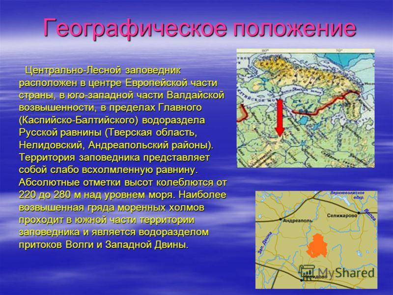 Географическое положение Географическое положение Центрально-Лесной заповедник расположен в центре Европейской части страны, в юго-западной части Валдайской возвышенности, в пределах Главного (Каспийско-Балтийского) водораздела Русской равнины (Тверс