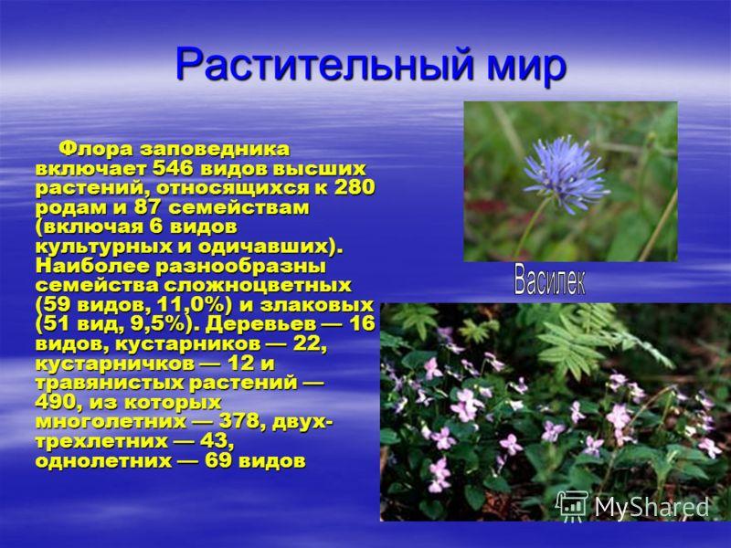 Растительный мир Растительный мир Флора заповедника включает 546 видов высших растений, относящихся к 280 родам и 87 семействам (включая 6 видов культурных и одичавших). Наиболее разнообразны семейства сложноцветных (59 видов, 11,0%) и злаковых (51 в