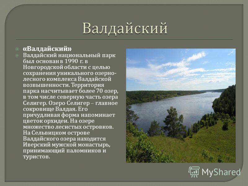 « Валдайский » Валдайский национальный парк был основан в 1990 г. в Новгородской области с целью сохранения уникального озерно - лесного комплекса Валдайской возвышенности. Территория парка насчитывает более 70 озер, в том числе северную часть озера
