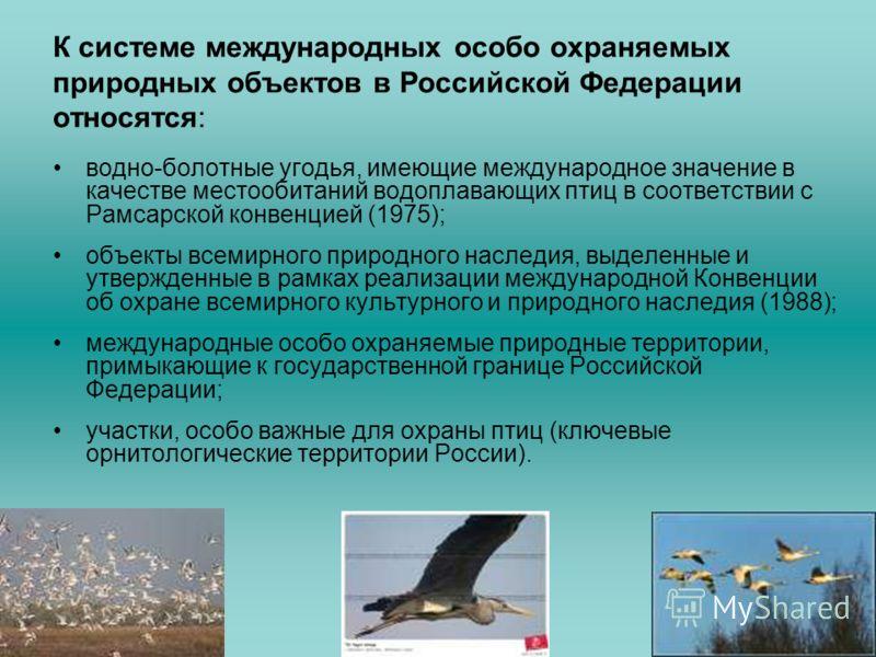 К системе международных особо охраняемых природных объектов в Российской Федерации относятся: водно-болотные угодья, имеющие международное значение в качестве местообитаний водоплавающих птиц в соответствии с Рамсарской конвенцией (1975); объекты все
