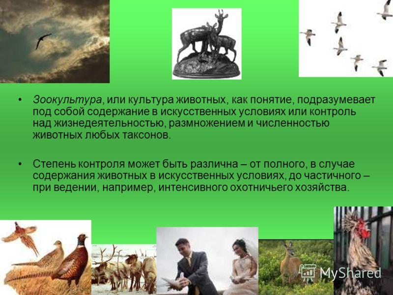 Зоокультура, или культура животных, как понятие, подразумевает под собой содержание в искусственных условиях или контроль над жизнедеятельностью, размножением и численностью животных любых таксонов. Степень контроля может быть различна – от полного,