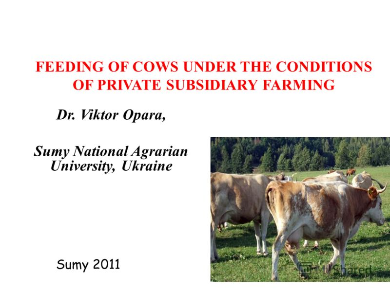 FEEDING OF COWS UNDER THE CONDITIONS OF PRIVATE SUBSIDIARY FARMING Dr. Viktor Opara, Sumy National Agrarian University, Ukraine Sumy 2011