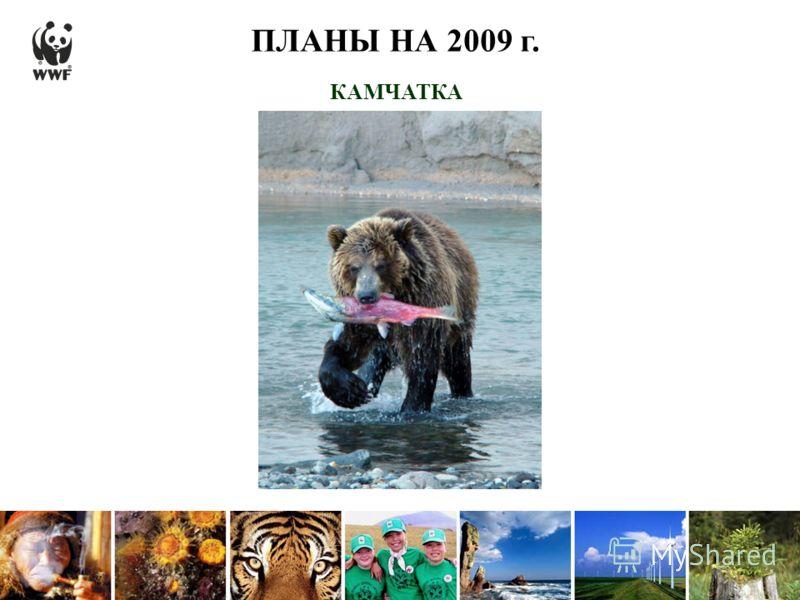 ПЛАНЫ НА 2009 г. КАМЧАТКА