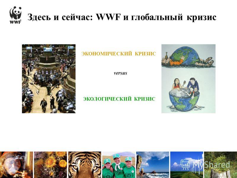 Здесь и сейчас: WWF и глобальный кризис ЭКОНОМИЧЕСКИЙ КРИЗИС ЭКОЛОГИЧЕСКИЙ КРИЗИС versus