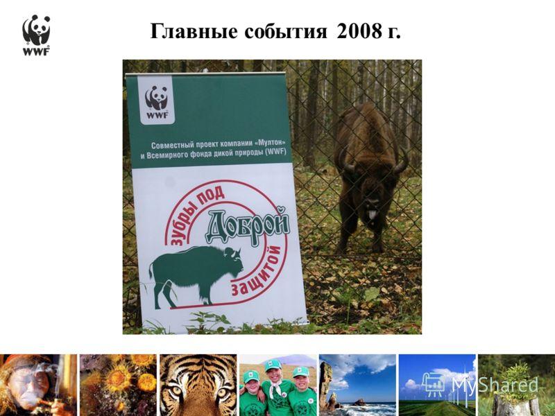 Главные события 2008 г.