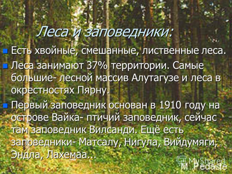 Леса и заповедники: n Есть хвойные, смешанные, лиственные леса. n Леса занимают 37% территории. Самые большие- лесной массив Алутагузе и леса в окрестностях Пярну. n Первый заповедник основан в 1910 году на острове Вайка- птичий заповедник, сейчас та