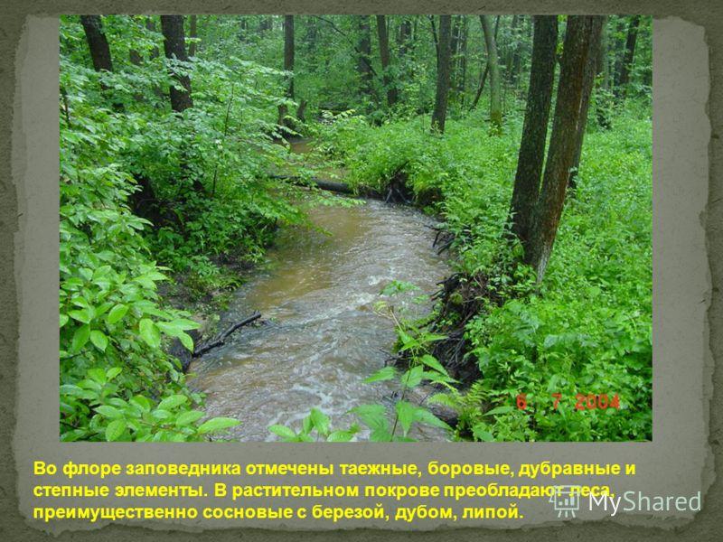 Во флоре заповедника отмечены таежные, боровые, дубравные и степные элементы. В растительном покрове преобладают леса, преимущественно сосновые с березой, дубом, липой.