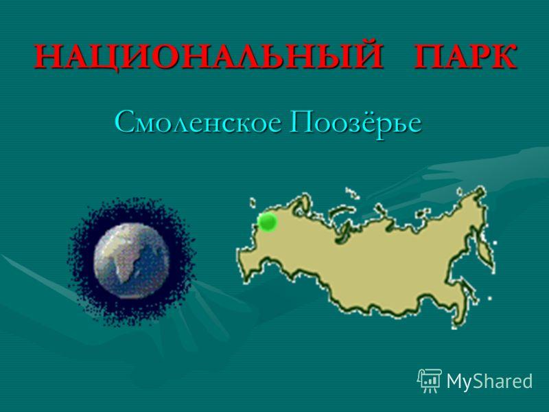 НАЦИОНАЛЬНЫЙ ПАРК Смоленское Поозёрье