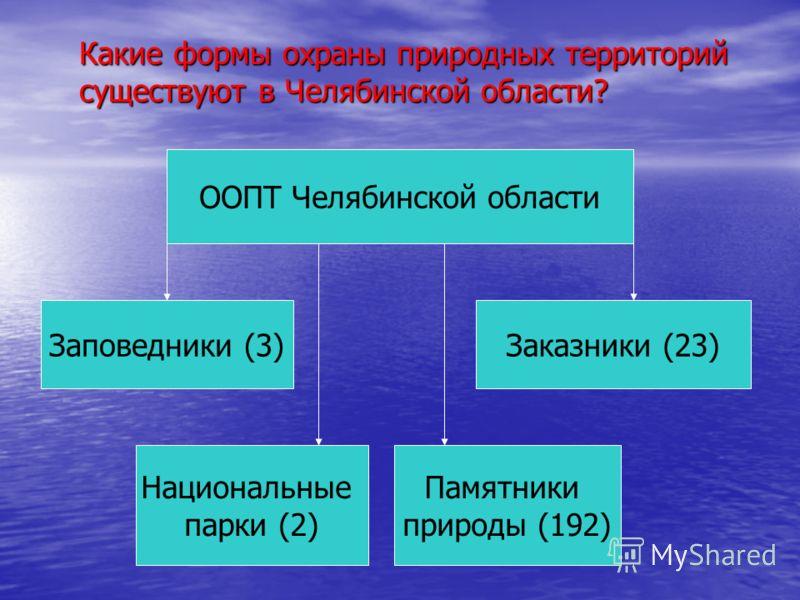 Какие формы охраны природных территорий существуют в Челябинской области? ООПТ Челябинской области Заповедники (3) Национальные парки (2) Памятники природы (192) Заказники (23)