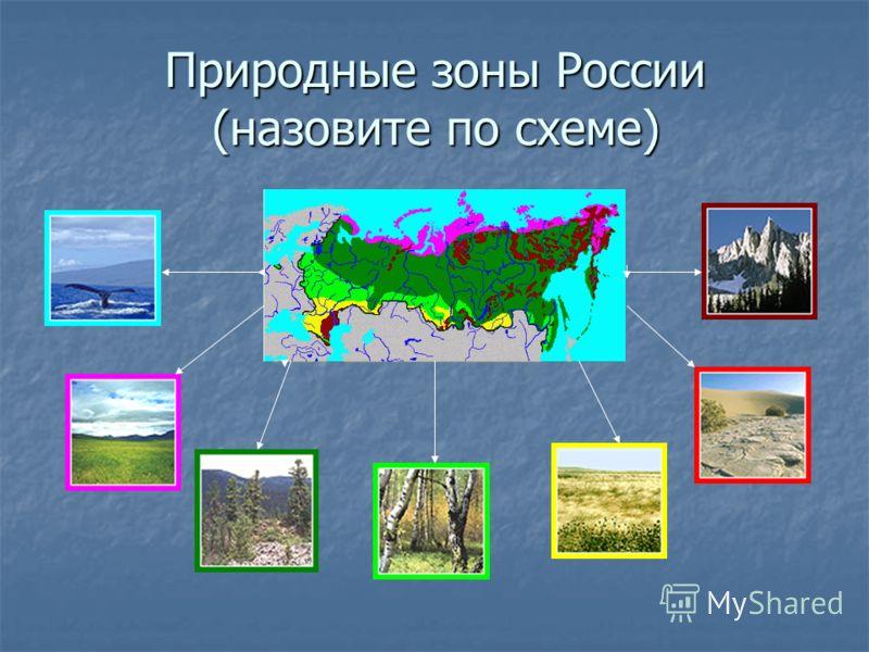 Природные зоны России (назовите по схеме)