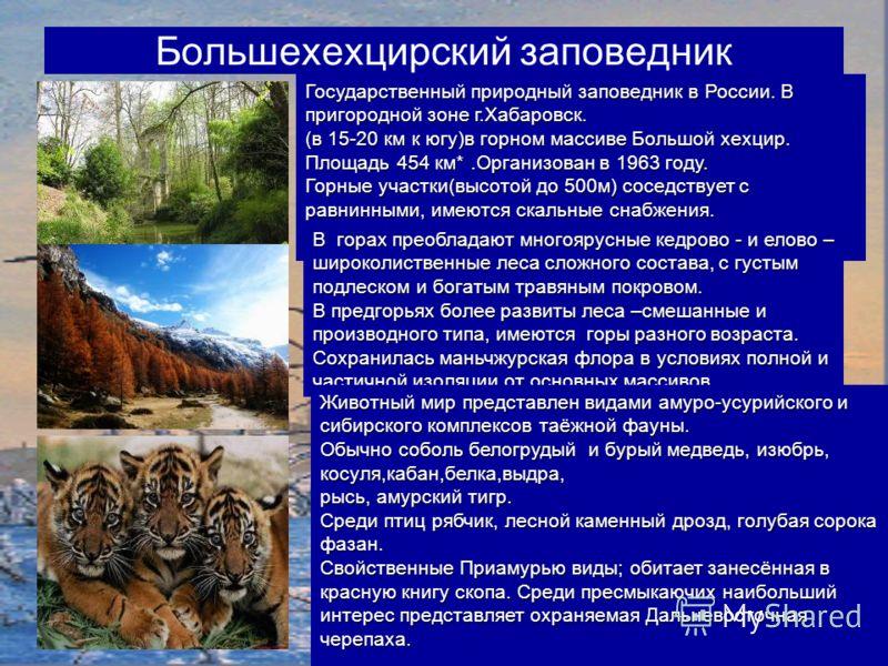 Большехехцирский заповедник Государственный природный заповедник в России. В пригородной зоне г.Хабаровск. (в 15-20 км к югу)в горном массиве Большой хехцир. Площадь 454 км*.Организован в 1963 году. Горные участки(высотой до 500м) соседствует с равни