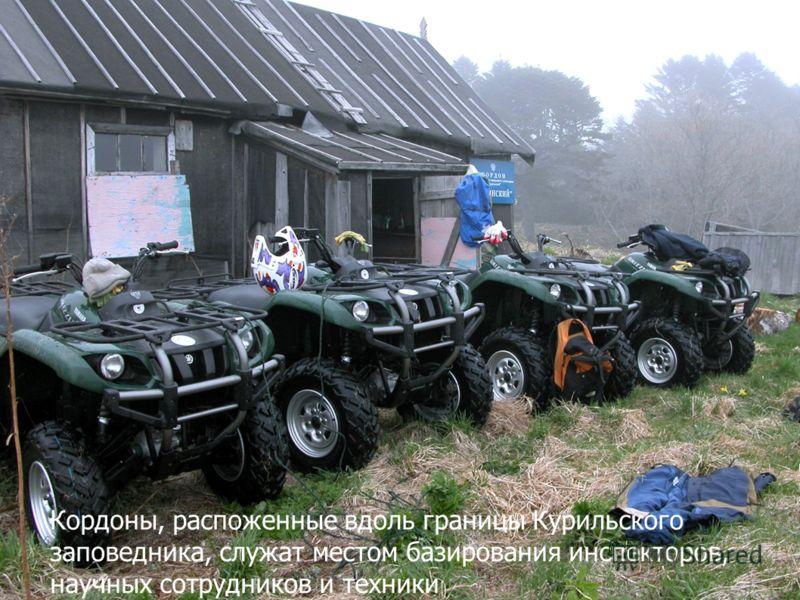 Кордоны, распоженные вдоль границы Курильского заповедника, служат местом базирования инспекторов, научных сотрудников и техники