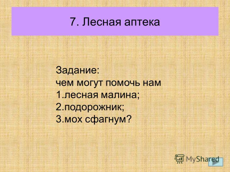 7. Лесная аптека Задание: чем могут помочь нам 1.лесная малина; 2.подорожник; 3.мох сфагнум?