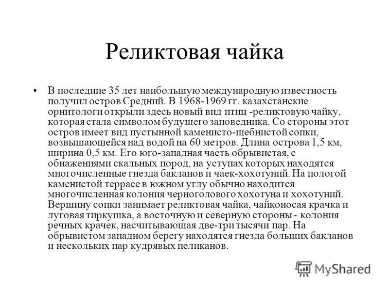 Реликтовая чайка В последние 35 лет наибольшую международную известность получил остров Средний. В 1968-1969 гг. казахстанские орнитологи открыли здесь новый вид птиц -реликтовую чайку, которая стала символом будущего заповедника. Со стороны этот ост