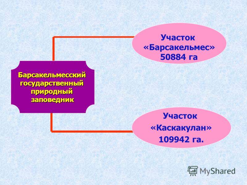 Барсакельмесскийгосударственныйприродныйзаповедник Участок «Барсакельмес» 50884 га Участок «Каскакулан» 109942 га.