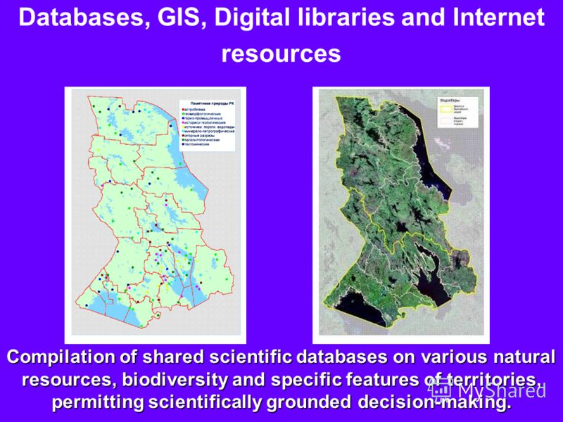 Compilation of shared scientific databases on various natural resources, biodiversity and specific features of territories, permitting scientifically grounded decision-making. Databases, GIS, Digital libraries and Internet resources
