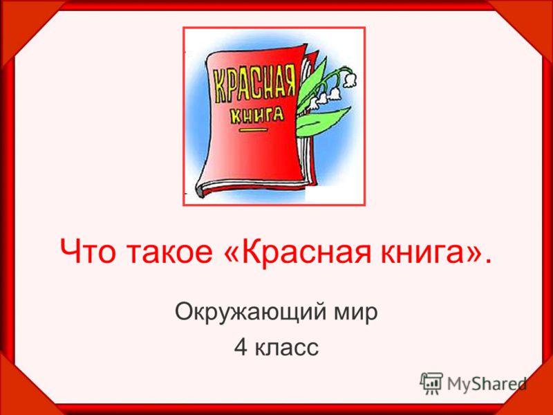 Что такое «Красная книга». Окружающий мир 4 класс