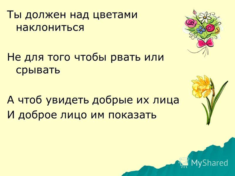 Ты должен над цветами наклониться Не для того чтобы рвать или срывать А чтоб увидеть добрые их лица И доброе лицо им показать