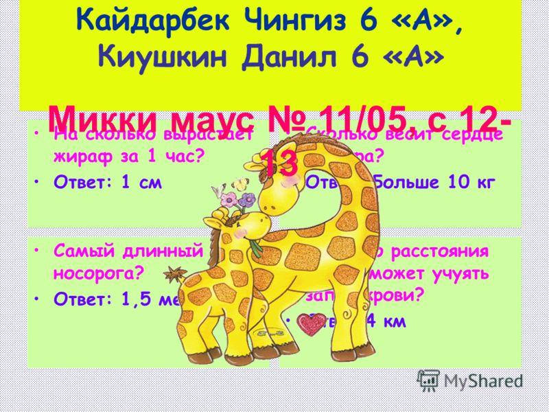 Кайдарбек Чингиз 6 «А», Киушкин Данил 6 «А» На сколько вырастает жираф за 1 час? Ответ: 1 см Сколько весит сердце жирафа? Ответ: Больше 10 кг Самый длинный рог носорога? Ответ: 1,5 метра С какого расстояния шакал может учуять запах крови? Ответ:4 км
