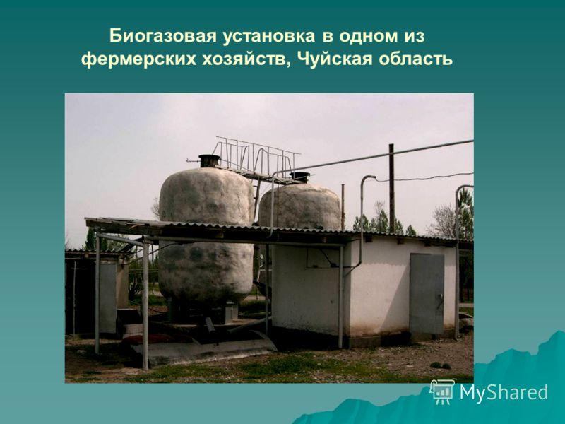 Биогазовая установка в одном из фермерских хозяйств, Чуйская область