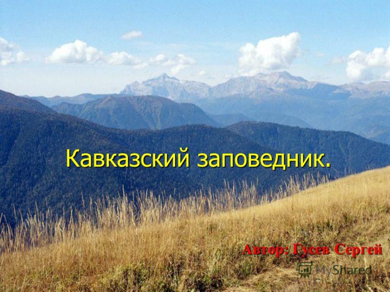 Кавказский заповедник. Кавказский заповедник. Автор: Гусев Сергей