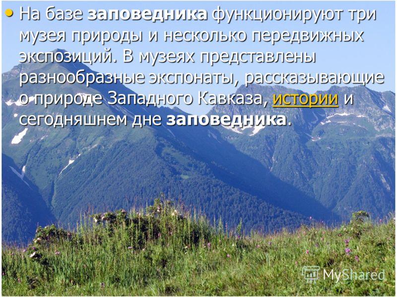 На базе заповедника функционируют три музея природы и несколько передвижных экспозиций. В музеях представлены разнообразные экспонаты, рассказывающие о природе Западного Кавказа, истории и сегодняшнем дне заповедника. На базе заповедника функционирую