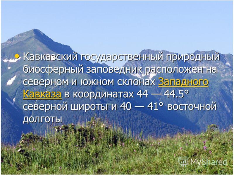Кавказский государственный природный биосферный заповедник расположен на северном и южном склонах Западного Кавказа в координатах 44 44.5° северной широты и 40 41° восточной долготы Кавказский государственный природный биосферный заповедник расположе